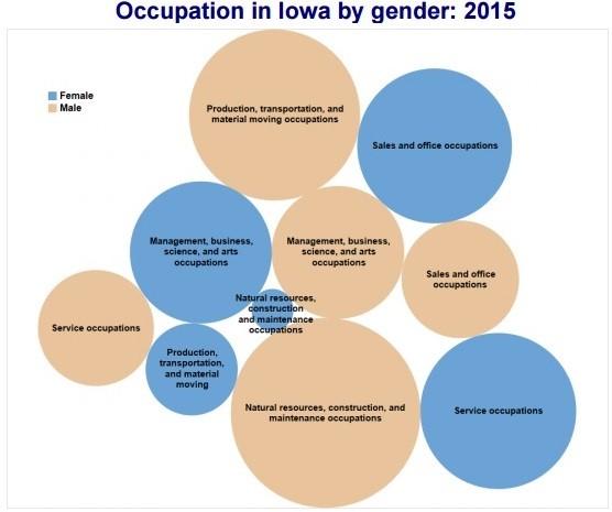 Occupation in Iowa by gender