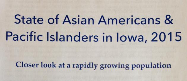 AAPI Report